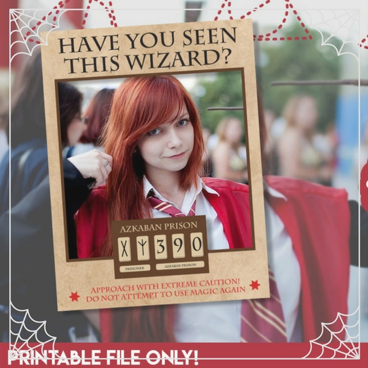 Have You Seen This Wizard Photo Frame