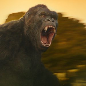 """ONG in Warner Bros. Pictures' and Legendary Pictures' action adventure """"KONG: SKULL ISLAND,"""" a Warner Bros. Pictures release."""
