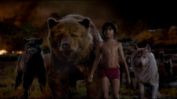 Bagheera, Baloo, Mowglie and Raksha in The Jungle Book